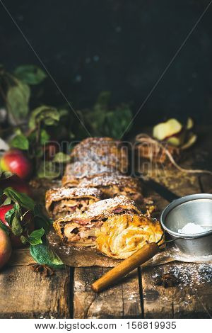 Apple strudel cake cut in pieces with fresh red apples, sugar powder and spices on rustic wooden table, dark plywood wall background, copy space, vertical composition