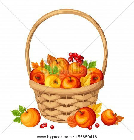 Vector basket with colorful autumn apples and leaves isolated on a white background.