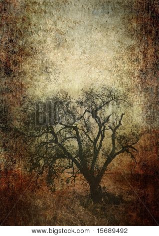 Oak tree on a grunge background