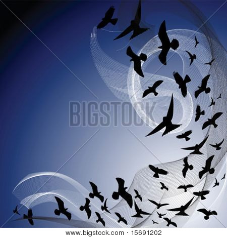 silhouette of birds flying in a dark sky