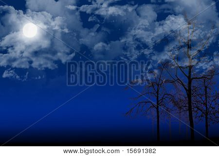 Evening scene of clouds over a full moon and silhouetted trees