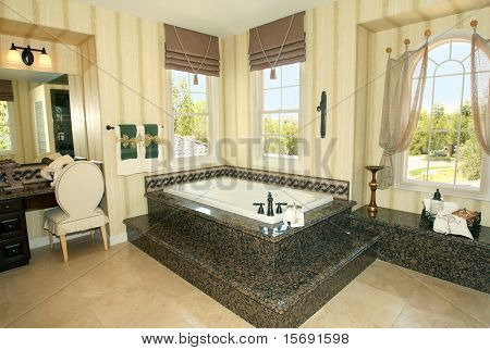 Elegant master bathroom with granite details