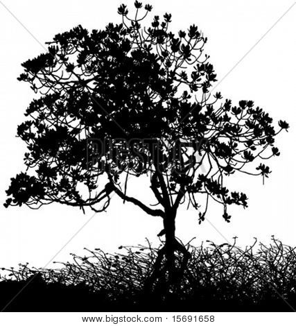 Silueta de vector de un árbol y arbustos