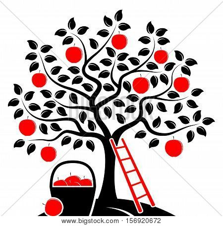 vector apple tree, ladder and basket of apples isolated on white background