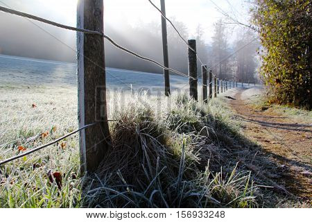 Autumn Landscape / Frosty morning in the mountains