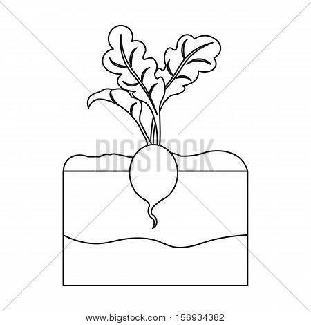 Radish icon in outline style isolated on white background. Plant symbol vector illustration.