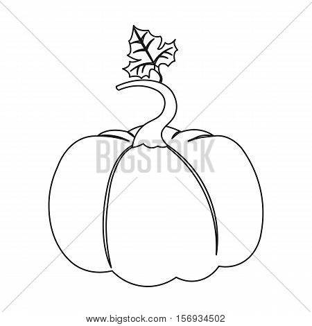 Pumpkin icon in outline style isolated on white background. Plant symbol vector illustration.