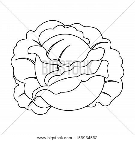 Cabbage icon in outline style isolated on white background. Plant symbol vector illustration.