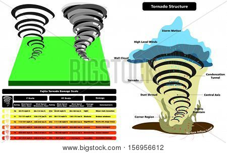 Tornado Structure Infographic cross section with all parts natural disaster damage scale wind speed grade consequences cloud wall storm motion level dust shroud condensation tunnel surface layer