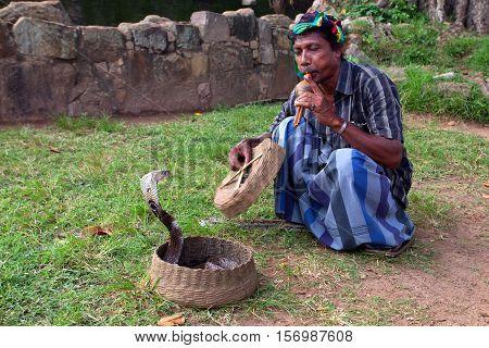 ANURADHAPURA, SRI LANKA - CIRCA DECEMBER 2013: Snake enchanter or fakir plays pipe to enchant cobra. Anuradhapura is an ancient capital of Sinhalese kingdom, UNESCO World Heritage Site.