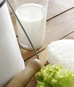 foto of milk products  - fresh milk and some cottage cheese - JPG