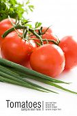 Fresh red tomatoes. Some lettuce and green onion. All on white background. Space for text isolated o
