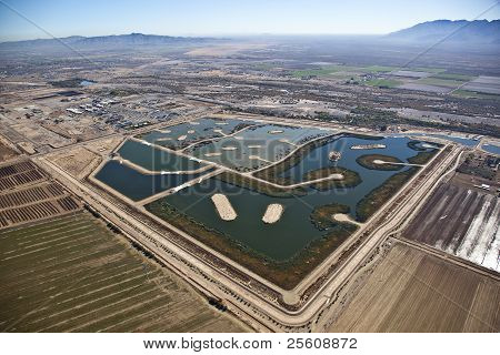 Wetlands in the Desert