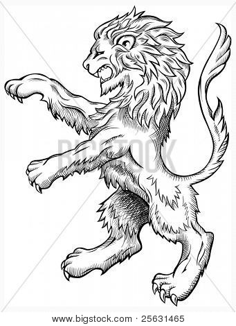 Leão selvagem