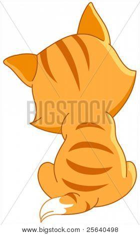 Kitten back
