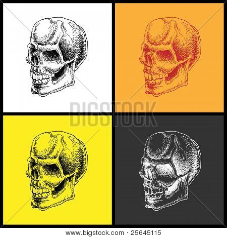 Set of doodle skulls. Hand drawn. Vector element for your design.