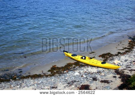 Yellow Sea Kayak