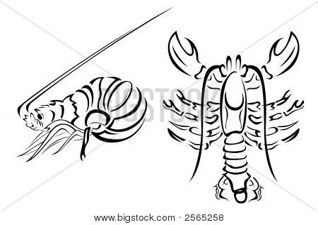 Lobster And Crayfish