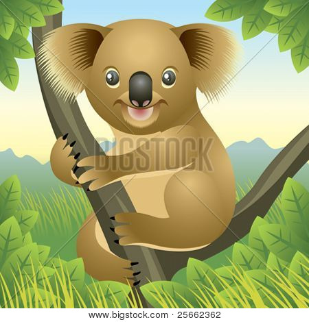 Baby Animal collection: Koala