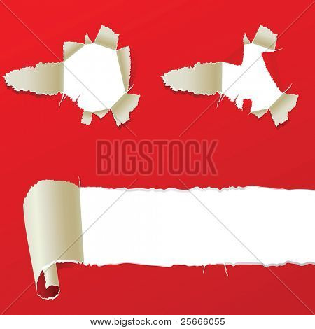 set of ripped paper