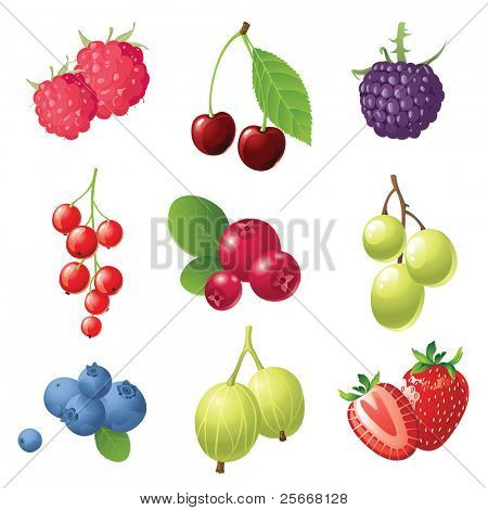 9 sweet berries icons set