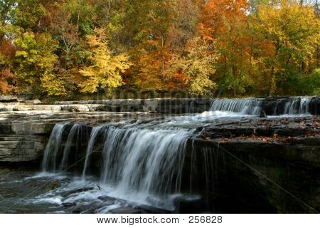 Autumn Leaves And Waterfall