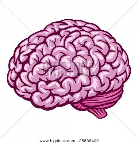 Brain. Vector Illustration