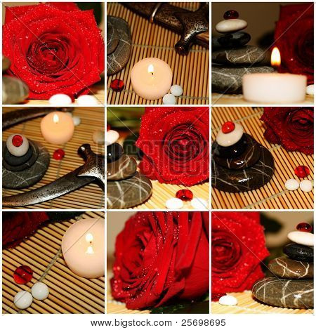 Red rose and silver dagger set