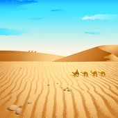 pic of hump day  - illustration of group of camel walking in desert - JPG