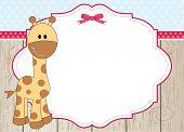Постер, плакат: Милый жираф кадр