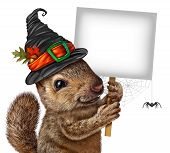 Halloween Squirrel Sign Concept As Cute Happy Rodent With Spider Wearing A Spooky Witch Hat Holding  poster