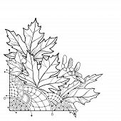 Vector Corner Bouquet With Outline Acer Or Maple Ornate Leaves In Black Isolated On White Background poster