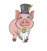 Pig Girl Is A Fashionista, Pig In The Cylinder And The Bib , Vector Illustration On White Background poster