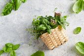 Assorted herbs in small wicker basket. Basket full of fresh summer herbs. poster