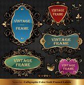 Vector set of Color luxury ornate frames poster