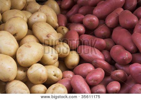Big bunch of natural potatoes at market