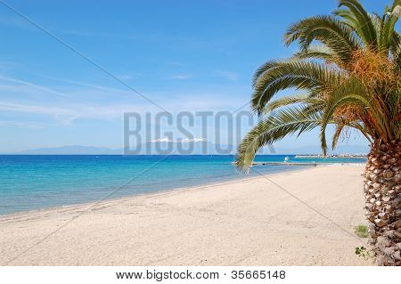 The Beach With Palm Tree And Mountain Olympus On Background, Halkidiki, Greece