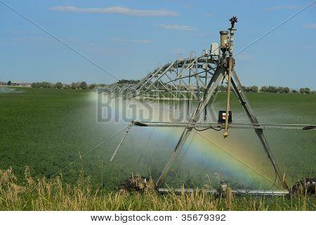 Irrigation Pivot With Rainbow