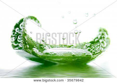 frisches Blatt im Wasser schwimmende
