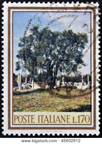 Um selo imprimido em Itália dedicada à biodiversidade florestal mostra uma oliveira