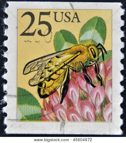 USA - CIRCA 1988: A stamp printed in the USA shows the Western honey bee (Apis mellifera) circa 1988