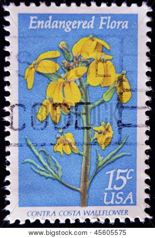 a stamp printed in the United States of America shows contra costa wallflower Endangered Flora