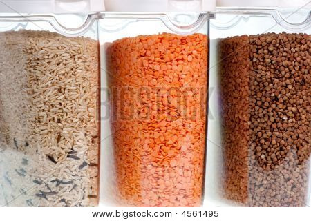 Food Containers Witn Grains