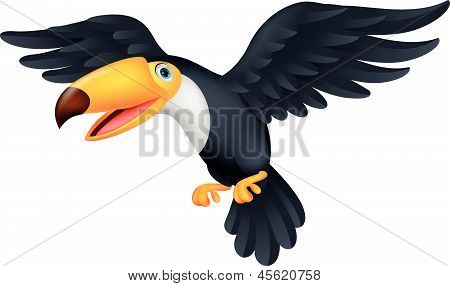 Toucan bird cartoon flying