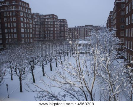 Dolphin Square In Snow
