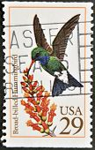 United States Of America - Circa 1992: A Stamp Printed In Usa Shows Broad-billed Hummingbird
