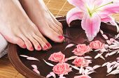 picture of ceramic bowl  - Spa background with a beautiful legs - JPG