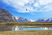 The wide valley surrounded by snow-capped mountains. A flock of Andean condors flying on the lake wi