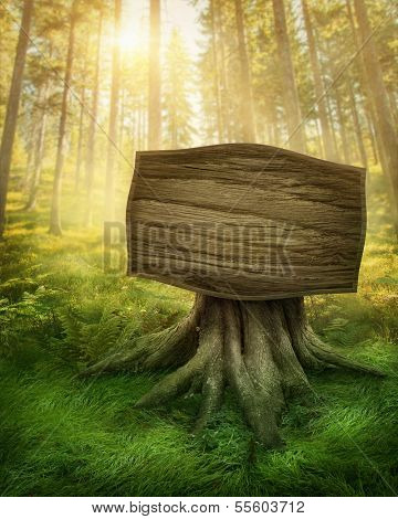 Wooden sign in the magic dark forest