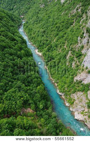 Canyon of Tara river